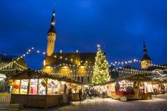estonia för 2009 jul marknad bild tagna tallinn Arkivbild
