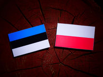 Estonia flag with Polish flag on a tree stump isolated. Estonia flag with Polish flag on a tree stump stock illustration