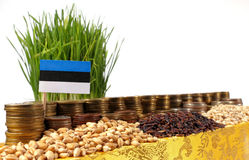 Estonia flag waving with stack of money coins and piles of wheat Royalty Free Stock Photography
