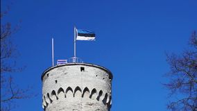 Estonia flag waving on a tall historic tower in Tallinn, Estonia. Estonia flag waving on a tall historic tower in front of the blue cloudless sky in Tallinn stock footage