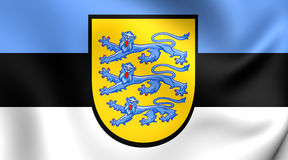 estonia flagga vektor illustrationer
