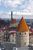 estonia gammala tallinn towers townen Arkivbild