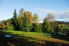 estonia leigo lato zdjęcie royalty free