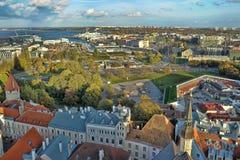estonia rooftops tallinn Royaltyfri Bild