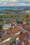 estonia rooftops tallinn Arkivbild
