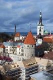 estonia tallinn Royaltyfri Bild