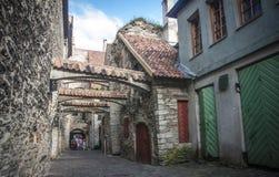 estonia Tallinn Obraz Royalty Free