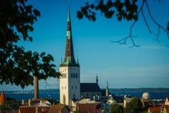 Estonia Tallinn, stary miasto Zdjęcia Royalty Free