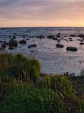 Estonian costal landscape Royalty Free Stock Photos