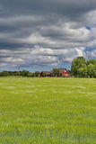 Estonian countryside - green field, cloudy sky and traditional rural house Stock Images