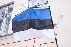 estonian flagę Zdjęcia Royalty Free