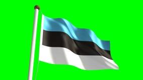 Estonian flag stock video
