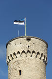 Estonian Flag Royalty Free Stock Photos