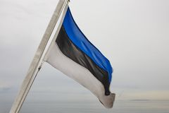 Estonian flag waving at dawn. European state. stock photos