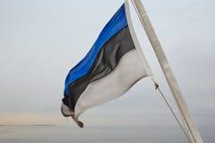 Estonian flag waving at dawn. European state. stock photography