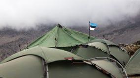 Estonians帐篷 库存图片