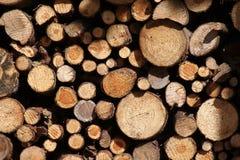 Estoque de madeira Fotos de Stock