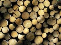 Estoque de madeira Foto de Stock