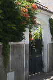 Estoril little street on summer time, stone fence with green outdoor plants with red flowers Stock Photography