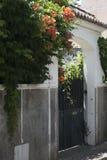 Estoril peu de rue l'heure d'été, barrière en pierre avec les usines extérieures vertes avec les fleurs rouges Photographie stock