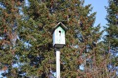 estorninho de madeira velho da mola da casa do pássaro do aviário fotos de stock