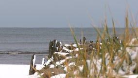 Estorno coberto com o período do inverno da neve na costa de mar Báltico filme