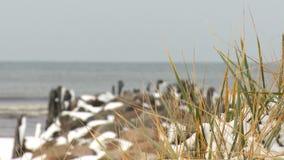 Estorno coberto com o período do inverno da neve na costa de mar Báltico video estoque