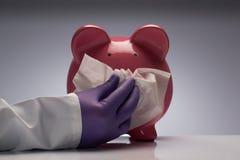 Estornudo de la gripe de los cerdos Foto de archivo libre de regalías