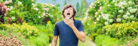 Estornudo del hombre joven en el parque contra la perspectiva de un árbol floreciente Alergia al formato largo de la BANDERA del  fotografía de archivo libre de regalías