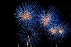 Estouro azul do fogo-de-artifício Imagem de Stock Royalty Free