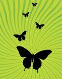 Estouro da raia e vetor do fundo da borboleta Ilustração do Vetor