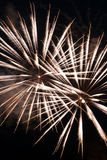 Estouros brancos do fogo-de-artifício Imagem de Stock