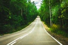 Estrada à distância entre a floresta Fotografia de Stock