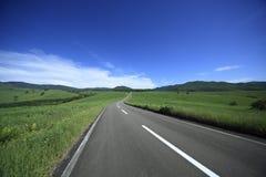 Estrada à montanha. imagens de stock
