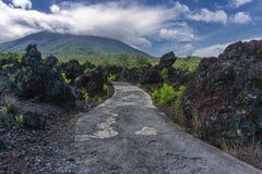 Estrada à montanha Imagem de Stock