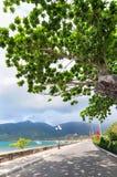 Estrada à montanha na ilha de Dao do engodo Imagem de Stock