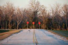 Estrada à nenhumaa parte com árvores inoperantes Fotografia de Stock Royalty Free