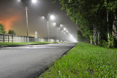 A estrada à planta Fotografia de Stock