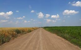 Estrada à terra entre dois campos agrícolas Imagens de Stock