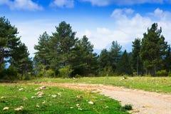 Estrada à terra na montanha Imagens de Stock