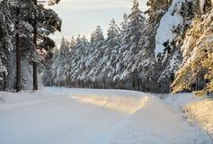 Estrada ártica Foto de Stock