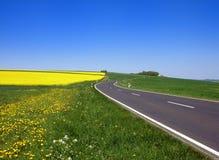 A estrada Imagem de Stock Royalty Free