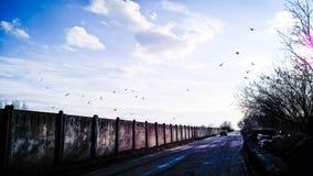 Estrada Foto de Stock
