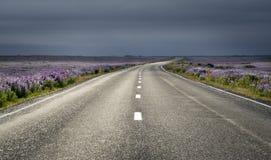 estrada Fotografia de Stock Royalty Free