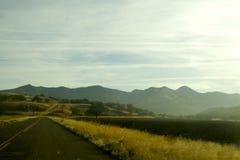 A estrada adiante Fotos de Stock Royalty Free