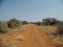 Estrada africana Imagem de Stock