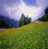 Estrada alpina Fotografia de Stock