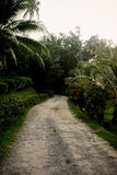 Estrada ao alojamento do beira-mar de Tempurung Imagens de Stock Royalty Free