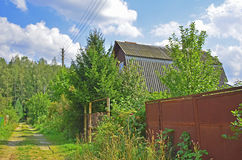 Estrada ao campo da floresta Foto de Stock