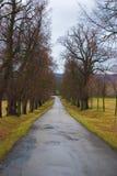 Estrada ao castelo Fotos de Stock Royalty Free